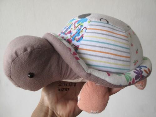 renu-tortoise